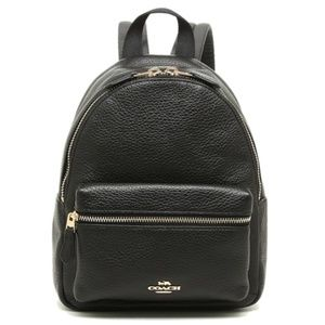 Mini Charlie Pebble Leather Small Backpack